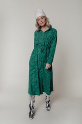 Colourful Rebel Dress Green Leopard